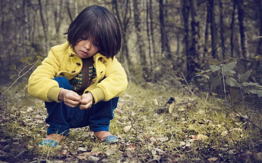 Aggressività e passività del bambino nella relazione adottiva